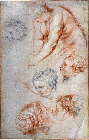 Tekeningen Van Peter Paul Rubens In De Met Venus