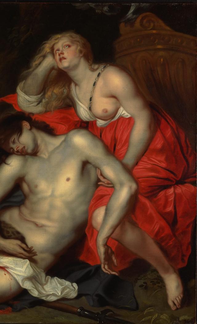 Venus huilt (Thomas…
